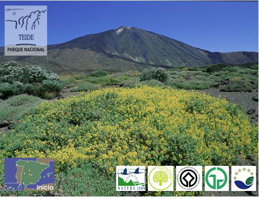 Parque Nacional del Teide. Información Ministerio